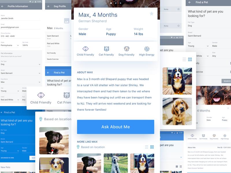 Pet Finder App uiux design ux ui iphone 10 iphone x application pet mobile app ios