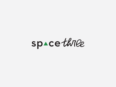spacethree logo brush script fitness logotype space three space triangle handlettering logo design
