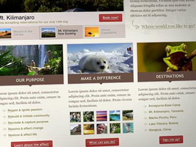 Website Concept concept website ecotourism travel