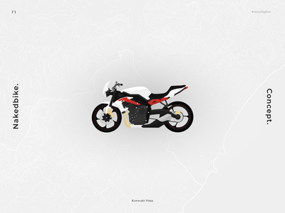 Streetfighter Motorcycle Concept (Kawasaki Ninja) flat design illustration flat vector nakedbike motorcycle motorbike concept flat illustration