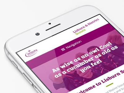 Lisburn & District Scouts responsive ux clean wordpress ui website