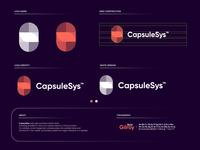 CapsuleSys