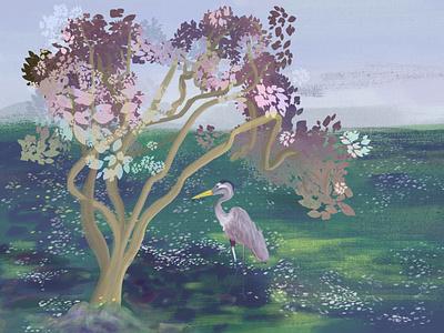Heron apple pencil ipad air heron botanical adobe fresco botanical illustration nature art nature illustration