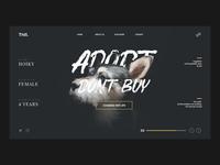 Pet Adopt Landing Page