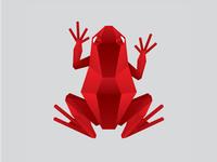 Geometric Frog