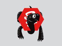 Startled Hexagon-Shelled Turtle