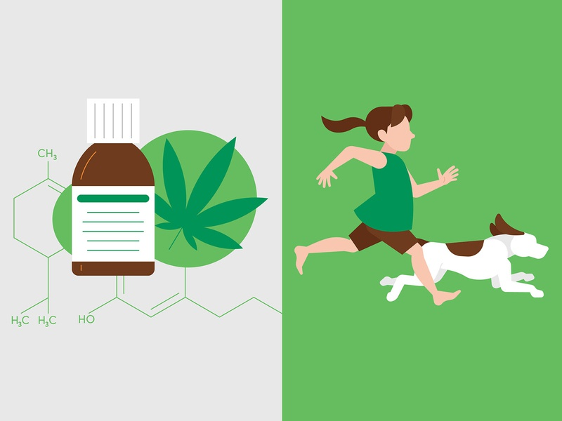 CBD Oil university of utah child dog utah medicine health cannabis cannabidiol