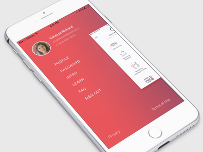 Raly Navigation animation icons profile red ui iphone navigation