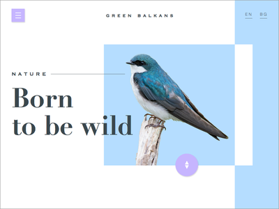 Green balkans- concept clean blue animal landing page nature interface minimalistic visual design web design