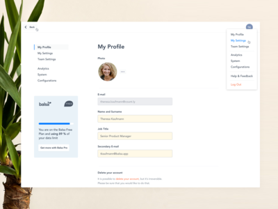 Profile Settings (Balsa)
