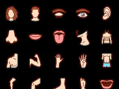 Human Body Parts Icons human icon vectors vector icons icons parts human body