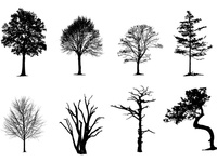 Vector Trees Pack
