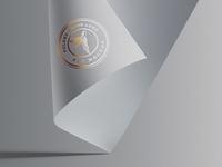 Folded Paper Logo Mockup