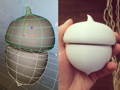 3D Printed Acorns