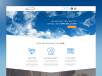 BlueCanopy Website