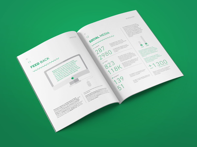 SOMAFCO Prelaunch Report - Feedback graph corporate illustration icons vector south africa information zigzag pattern green african report magazine book brochure print design layout print
