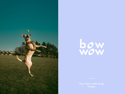 Branding & Packaging Design bowwow dog identity packaging design mark branding design label packaging branding