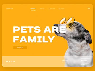 Pets Web minimal dashboard ui typography new dailyui website web ux ui design