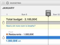 Budgeting widget