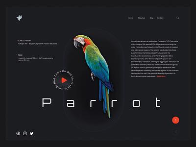Virtual Birds Exhibition - Website Layout ui animation landing page after effects header branding ui design web design website uiux pets bird animals animal conservation graphic design interaction