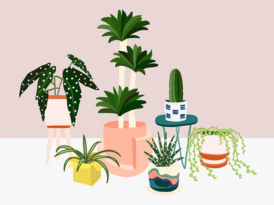 Plant Gang