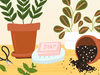 Why You Should Use Soap While Gardening