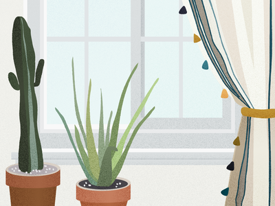 Plants by a Window