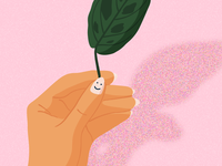 Maranta Leaf