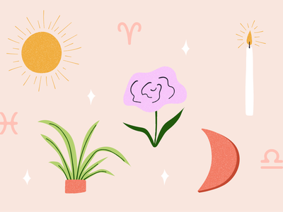 Spring Equinox Horoscope equinox spring candle sun moon spider plant flower simple zodiac horoscope houseplant whimsical plant cute editorial plants apartment therapy illustration