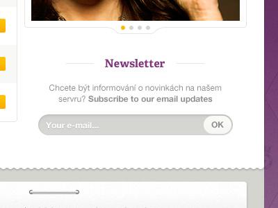 Newsletter newsletter ui web design website form input