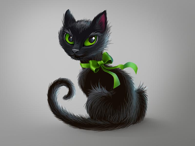 The name's Cat.. Black Cat gaze halloween cat black