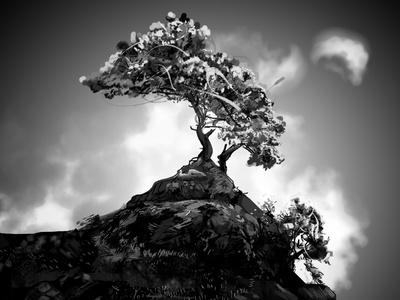 The Tree black and white inspiring nature illustration drawing tree