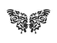 Butterfly Shape