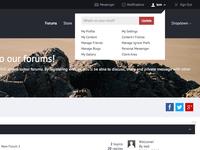 Flat forum header design