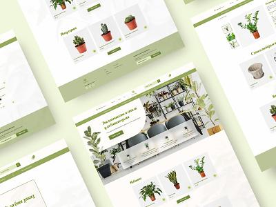 Home Plants Online-Shop растения цветы интернет-магазин flowers plantshop uidesign uxdesign webdesign online shop