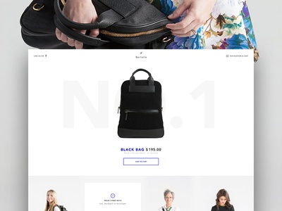 bartaile.com is online