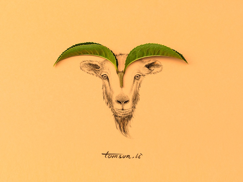 sheep yellow leaves animail horn sheep still life photography creative illustration painting drawing