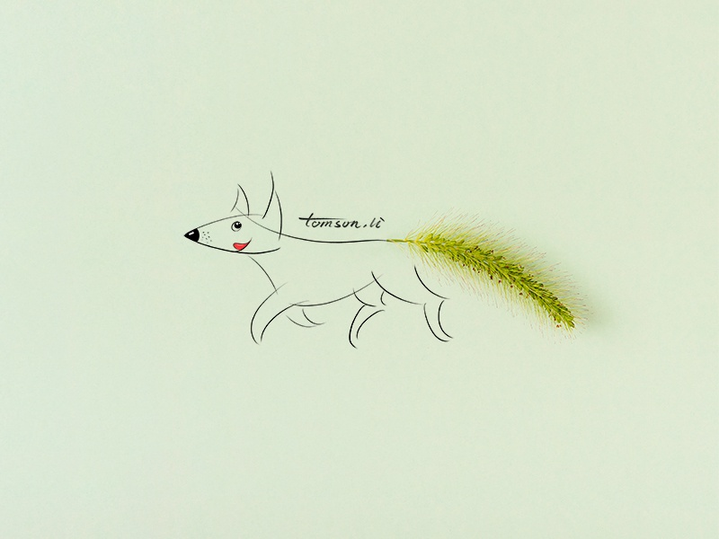 Foxtail green animal foxtail dog still life photography creative illustration painting drawing