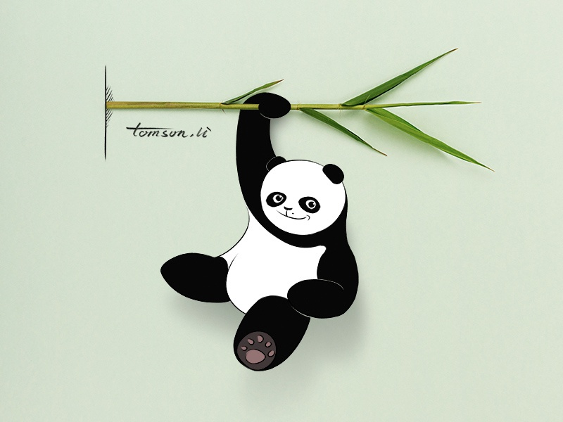 panda tomson.li amboo leaves animal still life photography creative illustration painting drawing panda