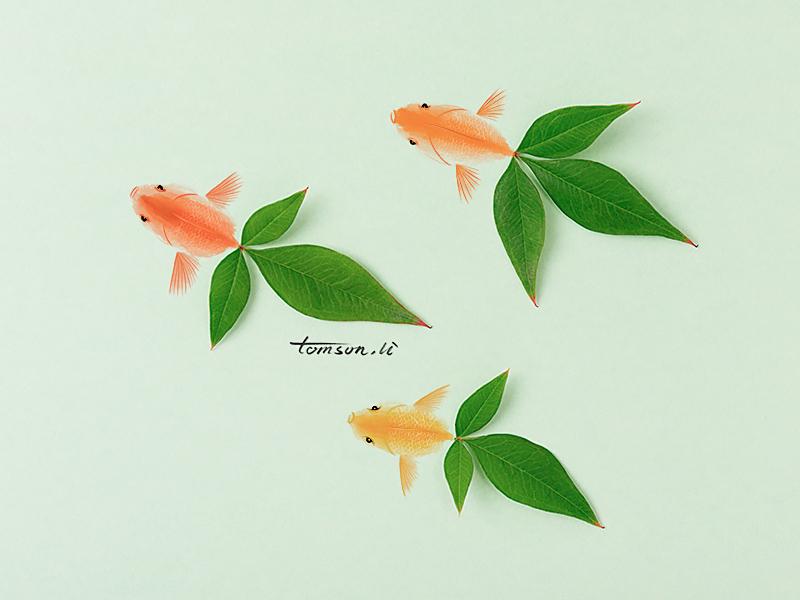 goldfish green tomson.li leaf animal still life photography creative illustration painting drawing goldfish