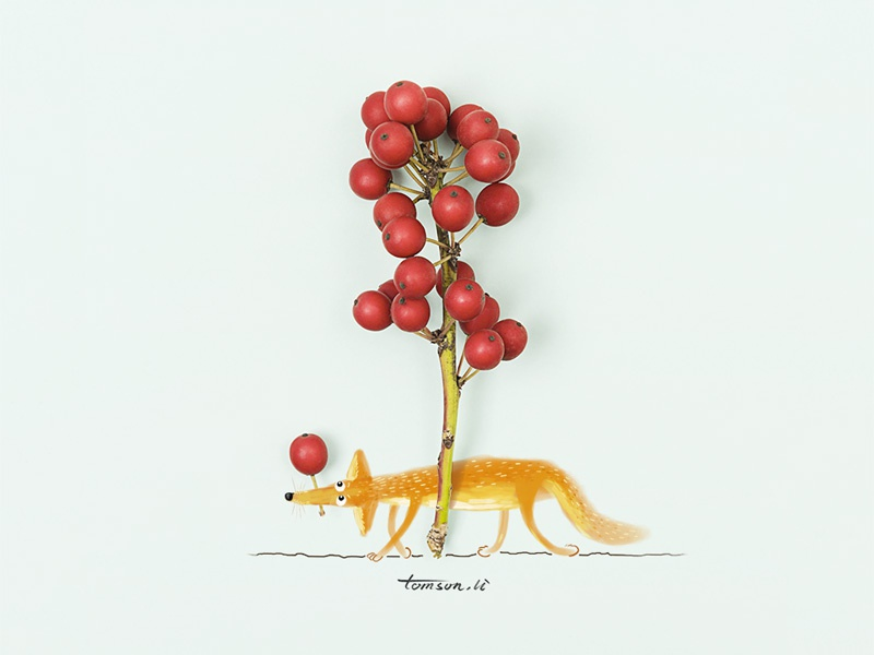 Foraging seed wild fruit animal fox still life photography creative illustration painting drawing foraging