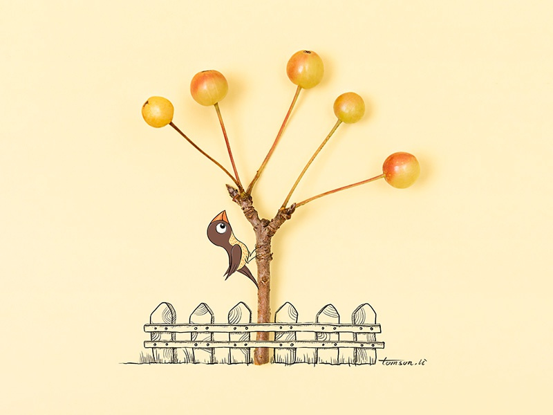 Human and Nature cherry bird still life photography creative illustration painting drawing nature