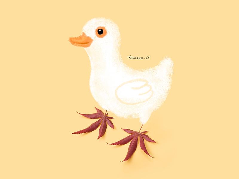 duck animal leaves duck tomson.li still life photography creative illustration painting drawing