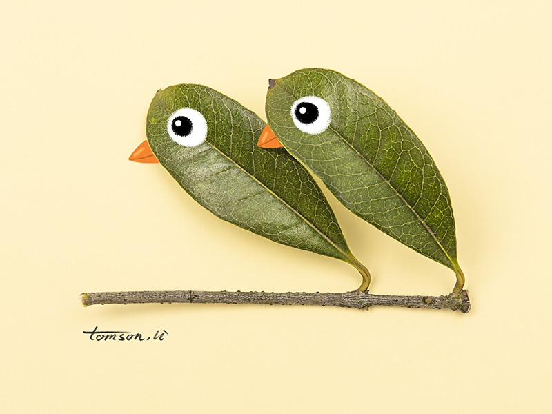 birds tomson.li love leaves animals still life photography creative illustration painting drawing birds