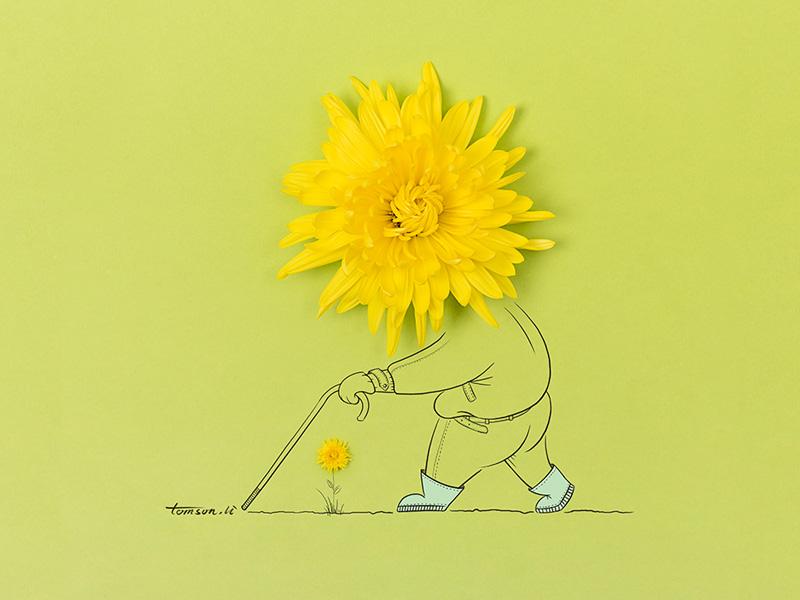 菊长 tomsonli man yellow chrysanthemum flower still life photography creative illustration painting drawing