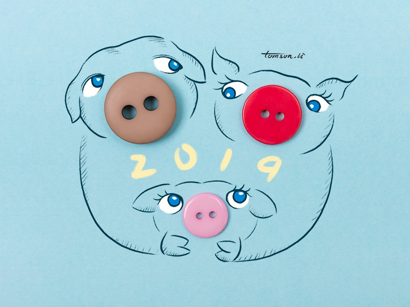 2019 tomson.li family animals button 2019 pigs still life photography creative illustration painting drawing