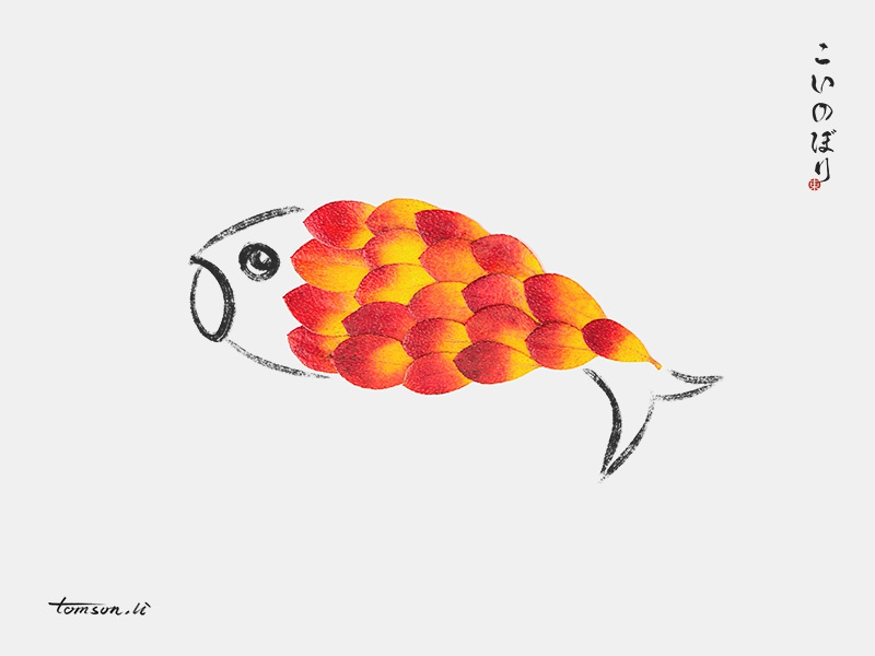 carp fish red leaf animal tomsonli still life photography creative illustration painting drawing carp