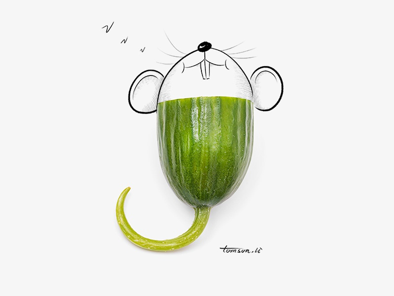 sleep vegetables cucumber mouse still life photography creative illustration painting drawing sleep