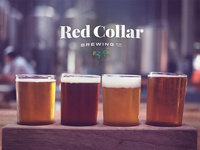 Red Collar Brewing Co
