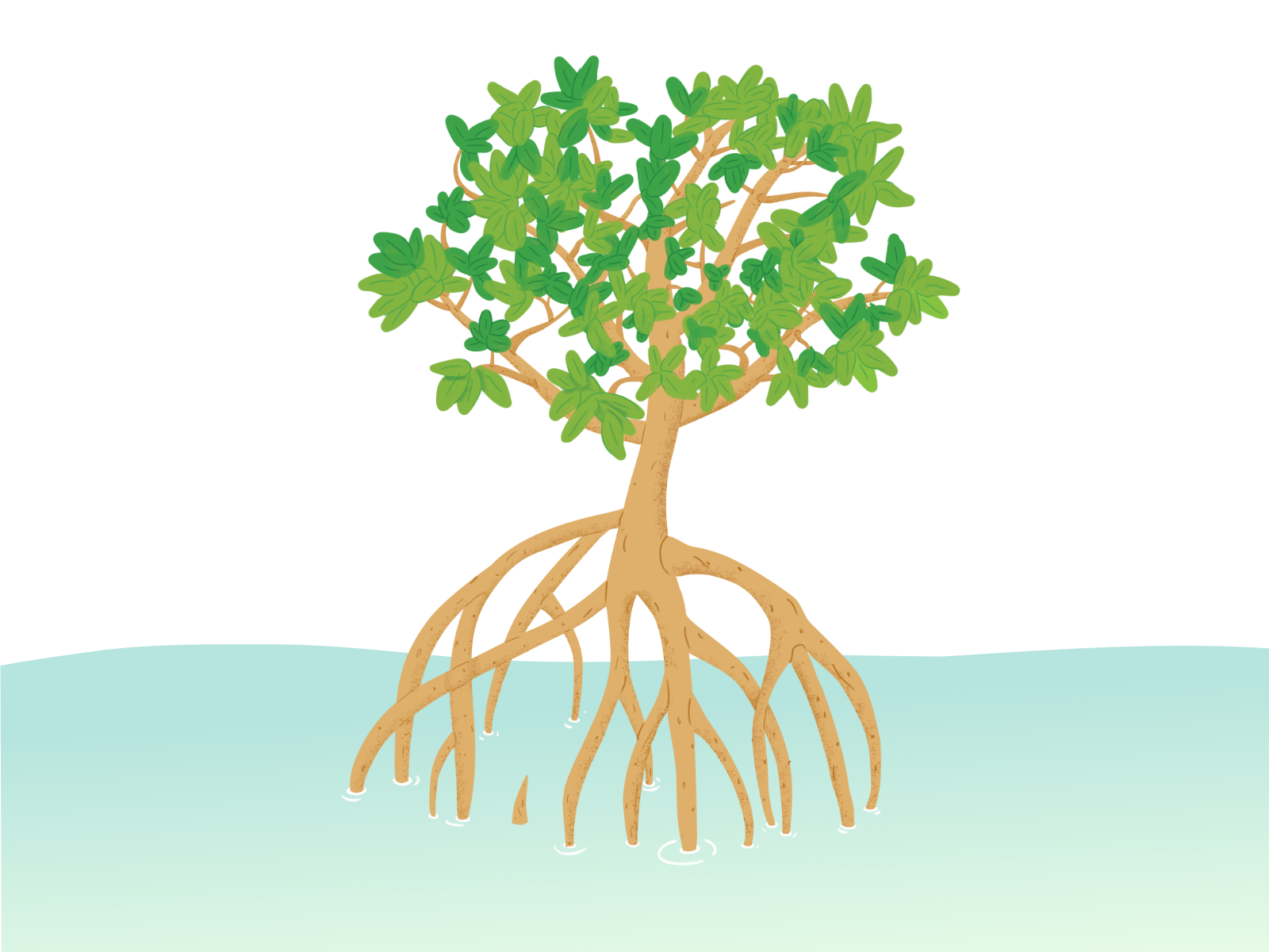 mangrove tree wip by alex strange on dribbble mangrove tree wip by alex strange on